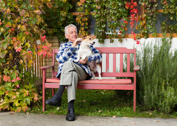 5 Therapeutic Activities for the Alzheimer's Care Partners