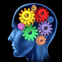 Memory-Loss-is-it-ADHD