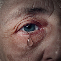 Fear, Aging and Memory Loss