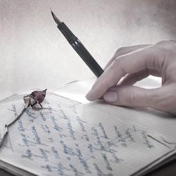 Love Poems, Their Magical Powers