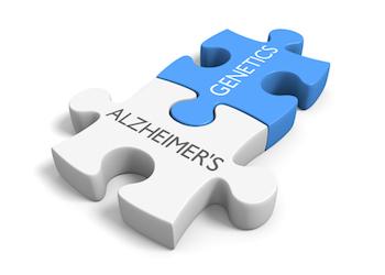 Alzheimer's and Genetics